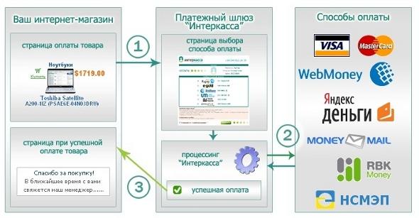 услуги хостинга домена