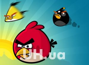 ���� ��� ����� �� ������������� Angry Birds