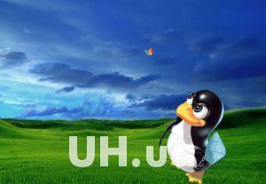 Linux – самая быстрорастущая операционная система